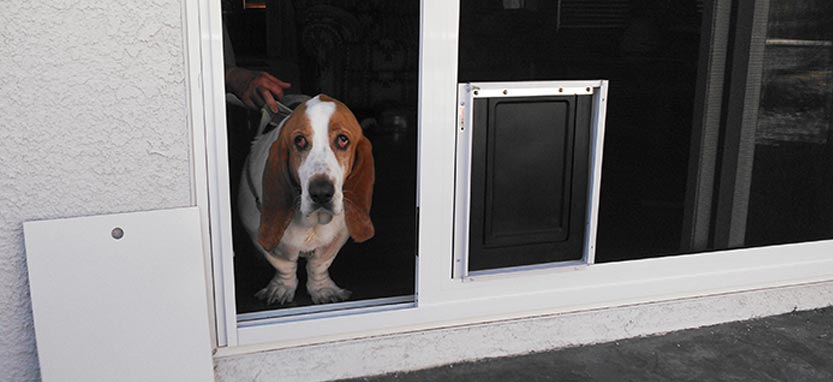 Pet Proof Screens And Enclosures